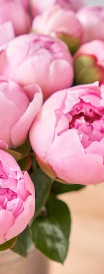 A warm basket of pink peonies against a wooden backdrop